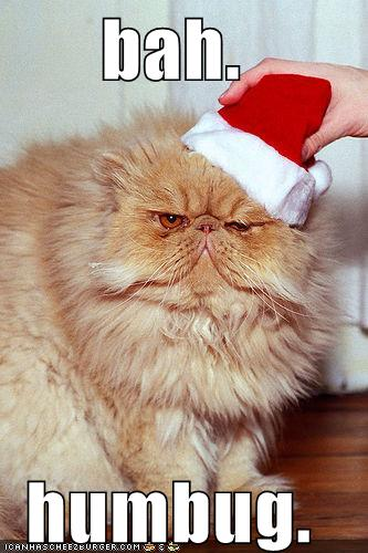 funny-pictures-bah-humbug-cat.jpg