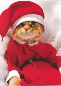 christmas-20081