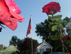 June 9 2008 006