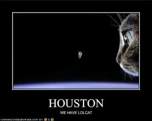 funny-pictures-your-cat-is-in-outer-space